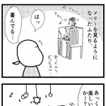 meri01-1