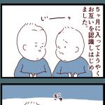 双子の相互認識