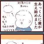 謎の音/KATOJI ハイチェア使用感など