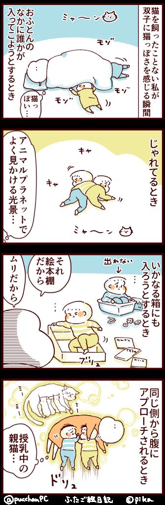 赤子の猫らしさ